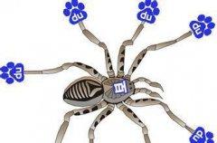 百度蜘蛛怎么识别,简单两步带你了解